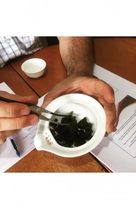 Introducción al mundo del té - Taller